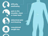 Causes of mesothelioma cancer and how to prevent it