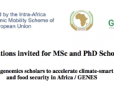 Scholarship: Apply for 2018 MSc and PhD