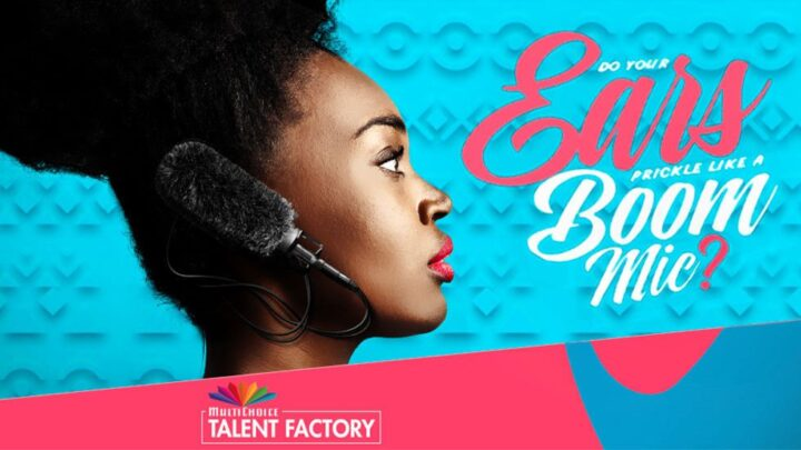 Skills Development Programme for African Creatives By MTF Film